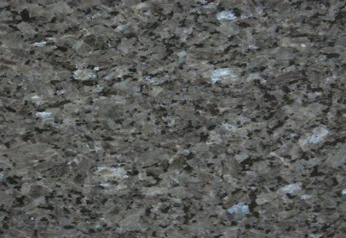 Labrador GT